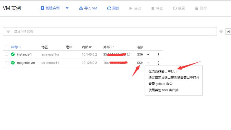 Magento跨境电商独立站运营系列教程(五) 一步到位 谷歌云平台为magento自建站部署SSL安全证书 19